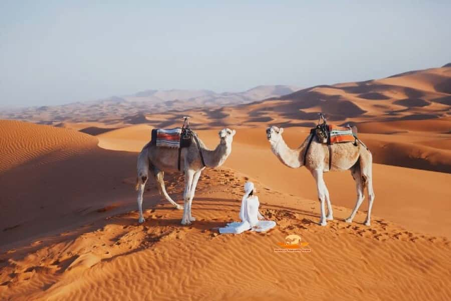 12 days morocco itinerary • top 12 days tour from Casablanca
