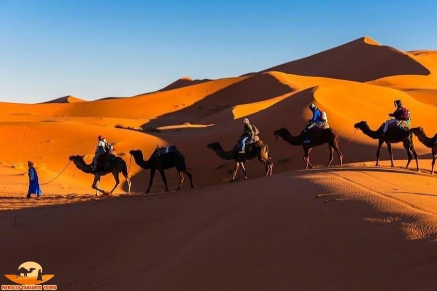 3天沙漠之旅行程 • 馬拉喀什到非斯 | 摩洛哥沙漠之旅 [私人/奢華]