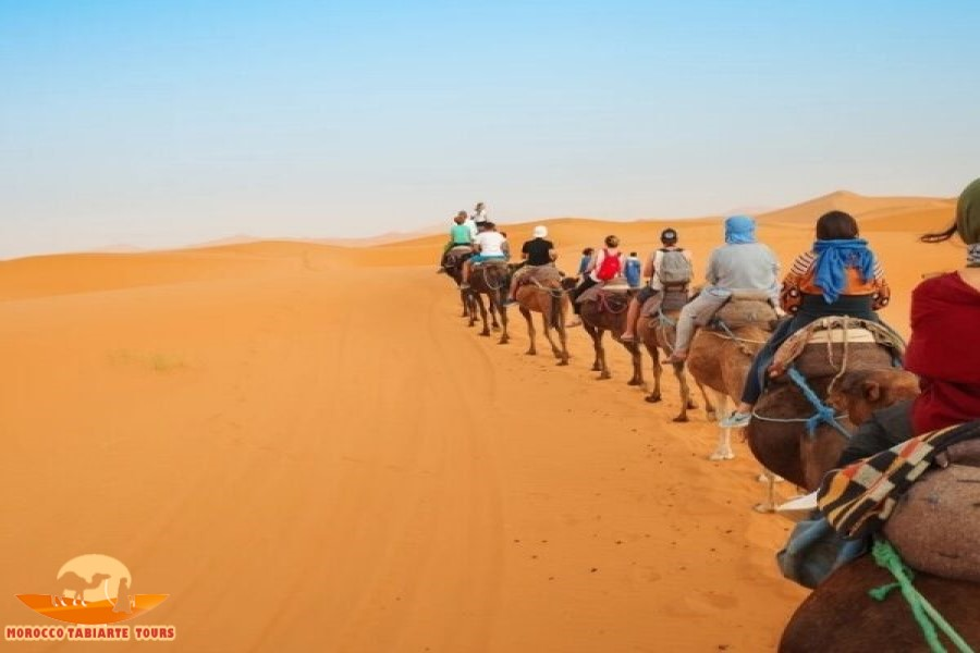 2天沙漠之旅